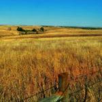nebraska plain